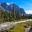 Temple pass trail in Banff National Park, Alberta, Canada — Stock Photo #53083251