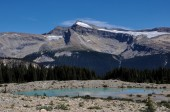 Iceline trail in Yoho National Park along with glaciers, British — Stock Photo