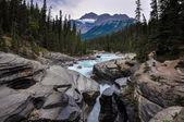 Athabaska falls, Alberta, Canada — Stock Photo