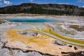 Uma das muitas paisagens cénicas do parque nacional de yellowstone, — Fotografia Stock