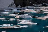 Szlak lodowej glacier national park, montana, stany zjednoczone ameryki — Zdjęcie stockowe