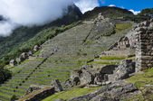 View over Machu Picchu Inca ruins, Peru — Stock Photo