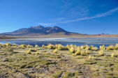 Gorgeous landscapes of Sur Lipez, South Bolivia — Stock Photo