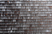 Unikalna konstrukcja drewniana płytki chiloe, wyspa chiloe, chile — Zdjęcie stockowe