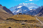 Aconcagua National Park's landscapes in between Chile and Argent — Stock Photo