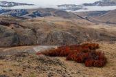 Autumn in El Chalten, Fitz Roy, Argentina — Stock Photo