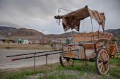 Antique carriage in El Chalten near Fitz Roy, Argentina — Stock Photo