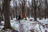 Trekkers in Fitz Roy trail, South Argentina — Stock Photo