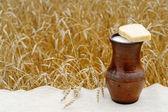 Pan con leche — Foto de Stock