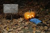 Funny Halloween. — Stock Photo