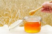 Aromatic, fragrant honey, poured into a glass jar. — Stock Photo