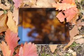 The reflection in the tablet lying on autumn leaves. — Photo