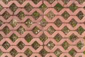 Sidewalk pavement with grass — Stock Photo