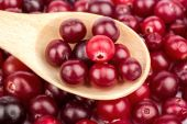 Cranberry in a spoon — Stockfoto