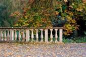 Old vintage stone lines in the park in autumn with trees — Stock Photo