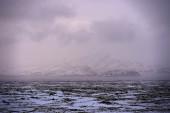 Islandic Landscape — Stock Photo