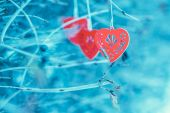 Red wooden hearts on the branch — Стоковое фото