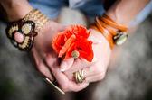 Poppy flowers in women hands — Stock Photo