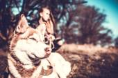 Girl and her husky dog outdoor in the forest — Stock fotografie