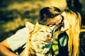 Portrait of husky dog outdoor with kissing couple behind — 图库照片
