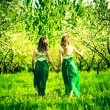 Girls walking on the apple trees garden — Stock Photo #74305289