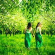 Girls walking on the apple trees garden — Stock Photo #74305319