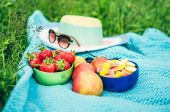 Picnic sheet with fruits on the grass, — Stock Photo