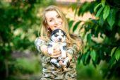 Piccolo cucciolo husky — Foto Stock