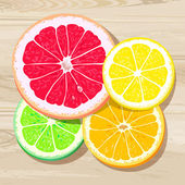 Four slices of citrus fruits — Stock Vector
