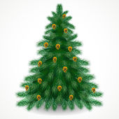 Pine tree with gold cones — Stock Vector