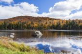 Beautiful and vivid autumn colour from the mountain reflecting on the lake. — Stock Photo