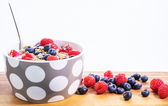 Bowl of organic cereals with berries — Stock Photo