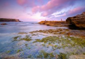 Beautiful coastal landscape — Stock Photo