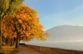Automne au lac Léman, Suisse — Photo