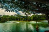 Lake near Wat Yan temple — Stock Photo
