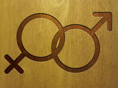 Male and female icon on wood — Foto Stock