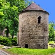 Romanesque Rotunda on Castle Hill in Cieszyn, Poland — Stock Photo #53875033