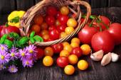 Tomatoes in basket with flowers — Stock Photo