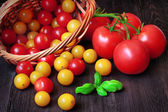 Fresh tomatoes in basket with basil — Stock Photo