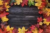 Autumn colored maple leaves on a wooden background — Stock Photo