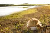 Opened hardback book diary on blurred nature background — Stock Photo