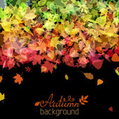 Colourful autumn background. — Stock Vector