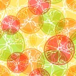 Seamless pattern of citrus fruits. — Stock Vector #54973663