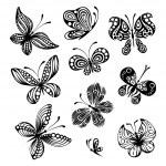 Set of butterflies — Stock Vector #54974637