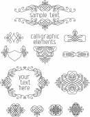 Calligraphic design elements. — Stock Vector