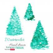 Vector watercolor evergreen trees.  — Stock Vector