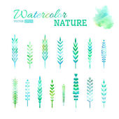 Set of watercolor leaves.  — Stock Vector
