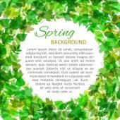 Vector spring background. — Stock Vector