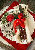 Christmas decoration — 图库照片
