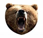 Bears head — 图库矢量图片